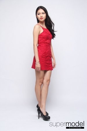 Jennifer Lace Detail Dress (Red)